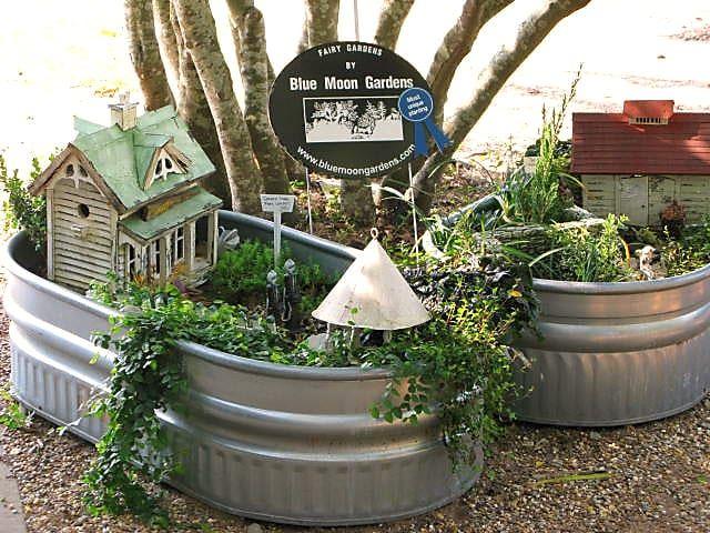 blue moon gardens tyler edome tx eguide 1