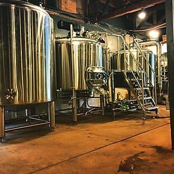 true-vine-brewery-tyler-tx-1234