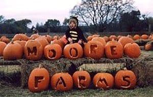 moore-farms-bullard-tx