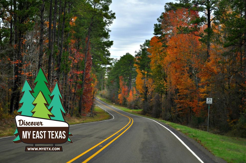 Halloween Events 2020 East Texas EGuide Tyler TX   It's Fall Y'all! Check Out The Ultimate Guide to
